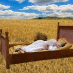 Uykusuzluk Sorununu Çözmek İçin Kullanılabilecek Bitkiler