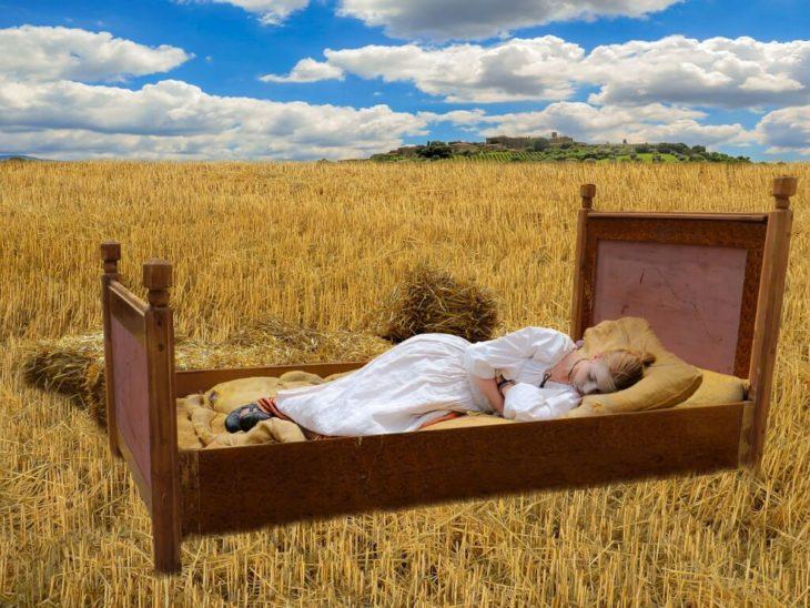 uykusuzluk sorununu çözmek için bitkiler