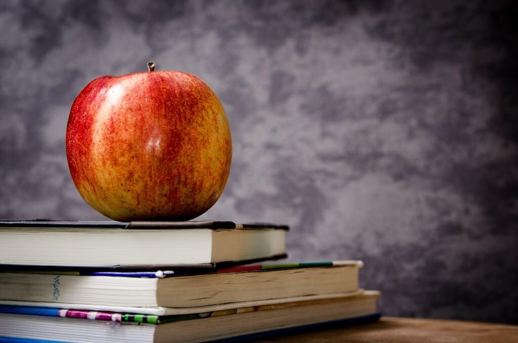 sağlıklı beslenme çocuğun okul başarısını