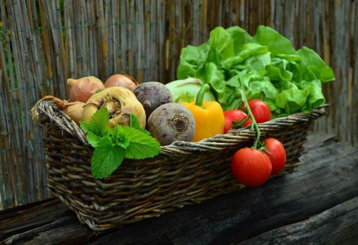 vitamin ve mineral eksiklikleri